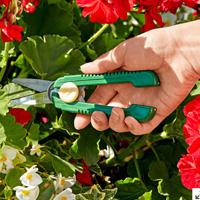 Nastal čas záhradníčenia - čo a kedy nezabudnúť?